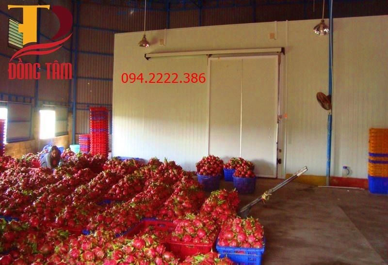 Thi công kho lạnh bảo quản hoa quả nhập khẩu cho anh Thắng tại Hoàng Văn Thái - Hà Nội