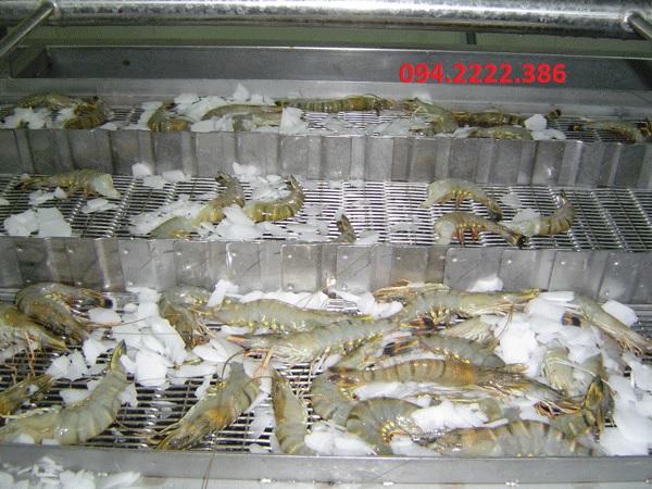Thi công kho lạnh bảo quản hải sản cho Khách sạn Thiên Trang Thành Phố Cẩm Phả - Quảng Ninh
