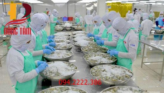 Thi công kho lạnh bảo quản tôm cá cho anh Bình Giao Xuân - Giao Thủy - Nam Định